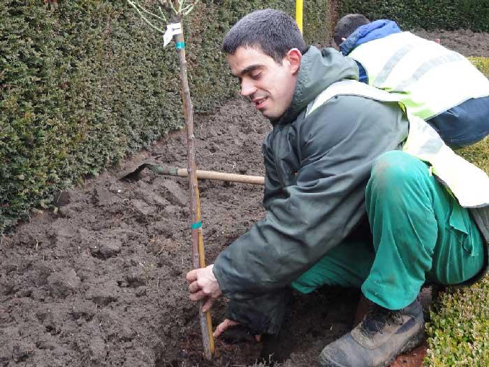 apprenti de l'ESAT dans les espaces verts